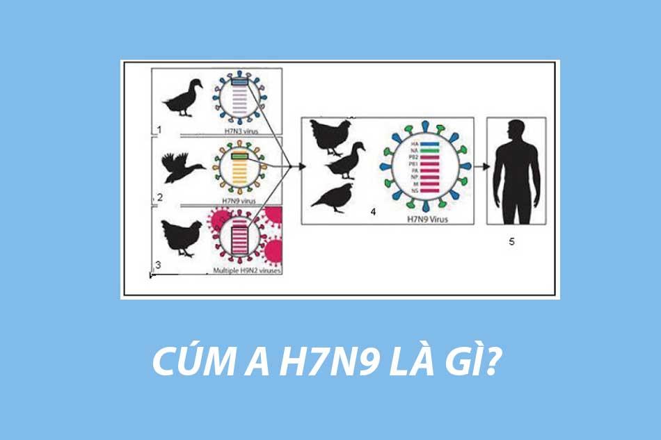 H7N9 là gì?