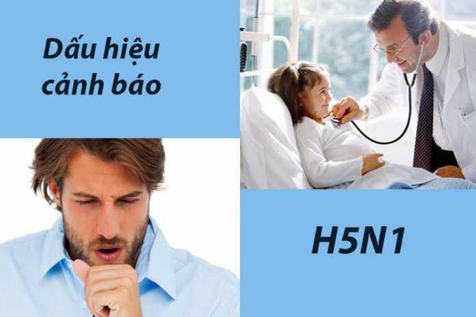 Dấu hiệu cảnh báo cúm A H5N1