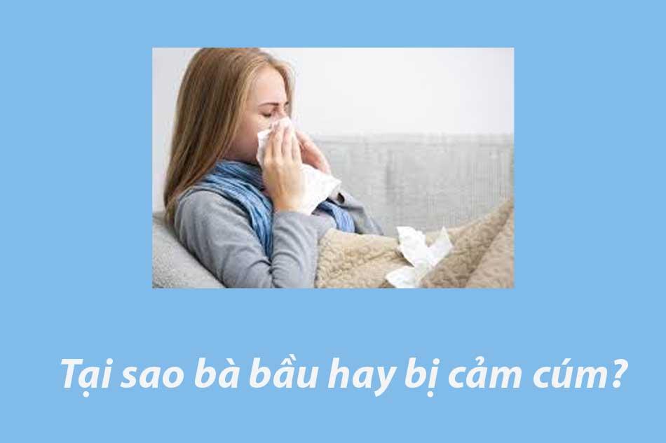 Tại sao bà bầu hay bị cảm cúm?