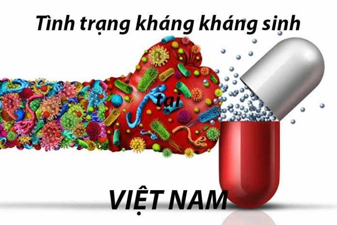 Tình trạng kháng kháng sinh tại Việt Nam