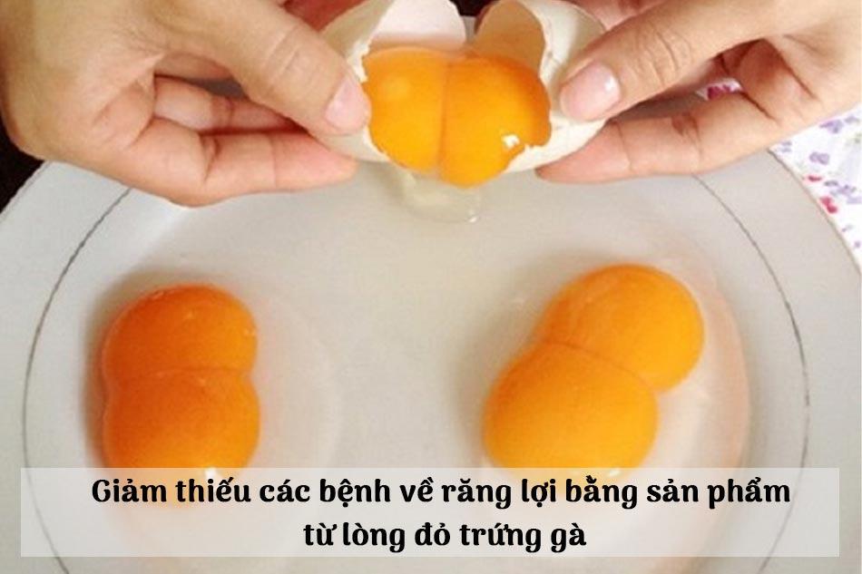 Giảm thiếu các bệnh về răng lợi bằng sản phẩm  từ lòng đỏ trứng gà