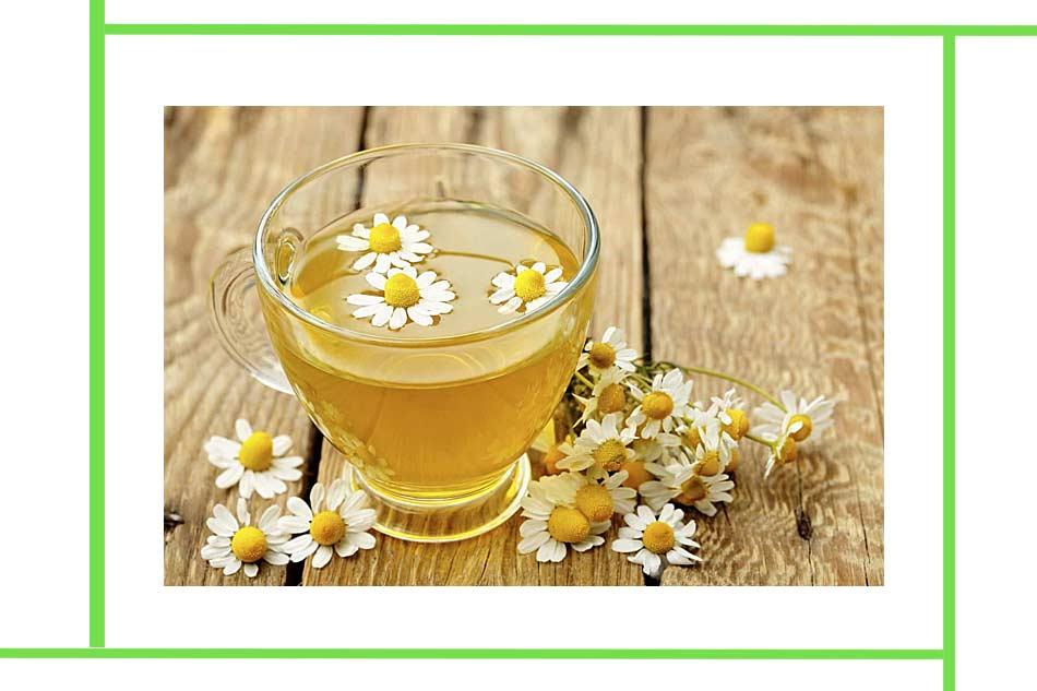 Hoa cúc có được dùng để thanh nhiệt, làm mát cơ thể, hạn chế viêm chân răng. (Ảnh minh họa)