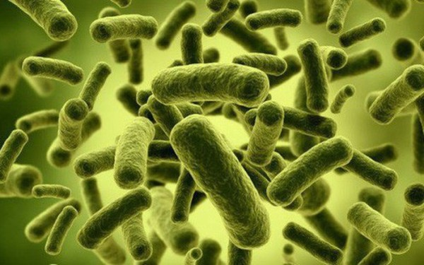 Sự xâm nhập của vi khuẩn là nguyên nhân gây ra chứng đau chân răng